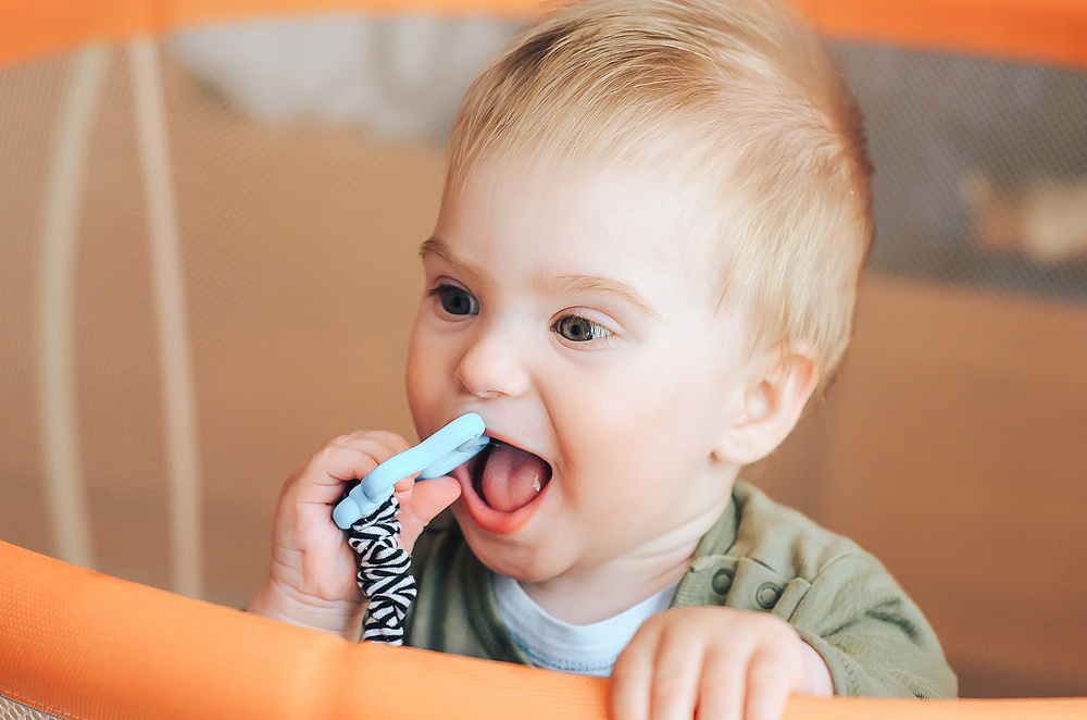 Bild: Baby chewing on teething ring toy. first teeth. Stenko Vlad shutterstock 693538303
